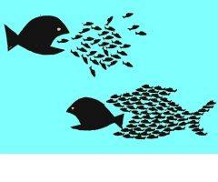 Crisis capitalista y lucha de clases