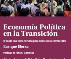 Libro: Economía Política en la Transición